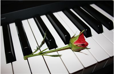 Red Rose on the Piano