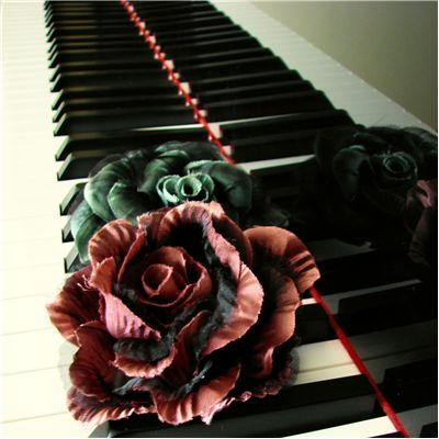 Roses on Grand Piano Keys